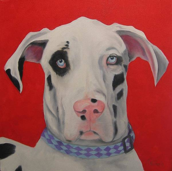 Black Great Dane Painting - Great Dane by Pet Whimsy  Portraits