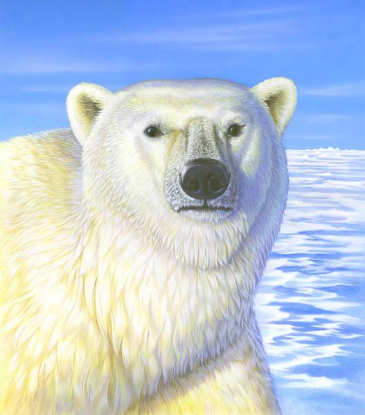 Mixed Media - Great Ice Bear by Anne Wertheim