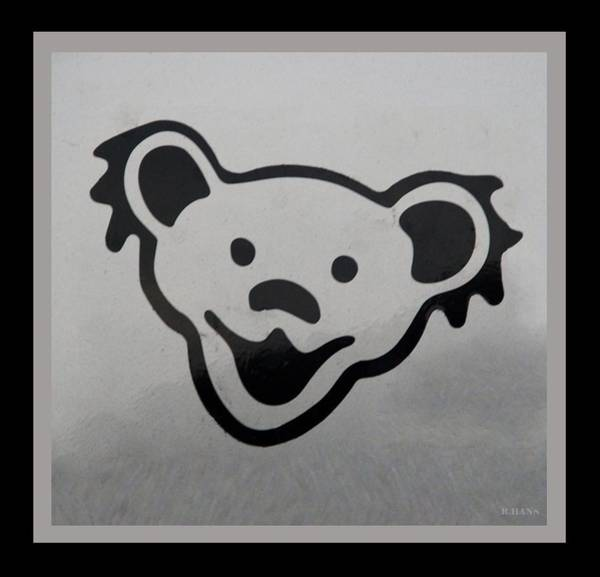 Greatful Dead Photograph - Greatful Dead Dancing Bear In Black And White by Rob Hans
