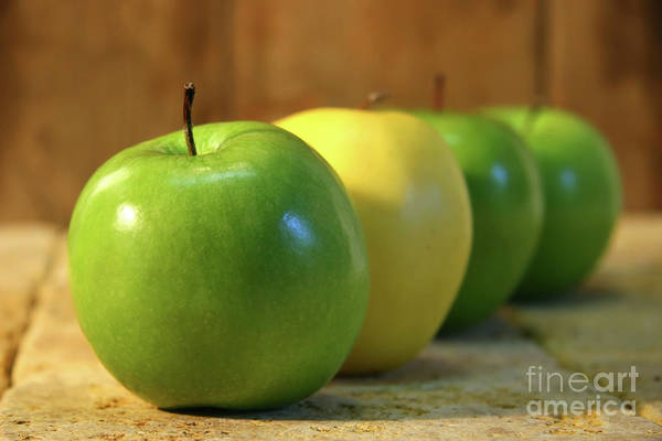 Bite Wall Art - Photograph - Green And Yellow Apples by Sandra Cunningham