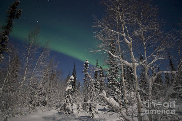 Yellowknife Wall Art - Photograph - Green Aurora At Prelude Lake by Yuichi Takasaka