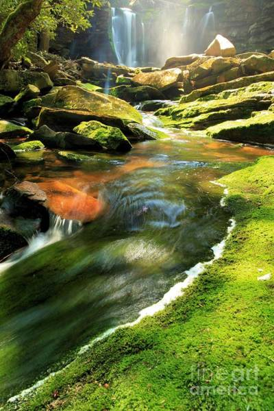 Photograph - Green Below The Falls by Adam Jewell