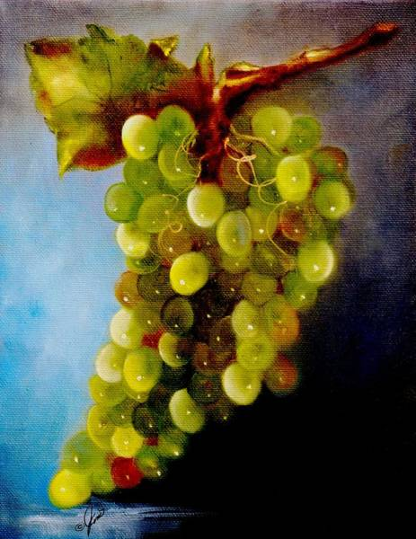 Vino Painting - Green Grapes 1 by Joni McPherson