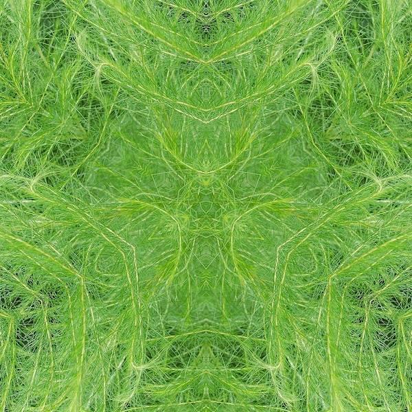 Katrina Digital Art - Green by Katrina Johns