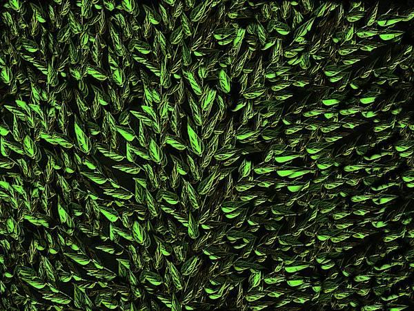 Digital Art - Green Leaf by David Dehner