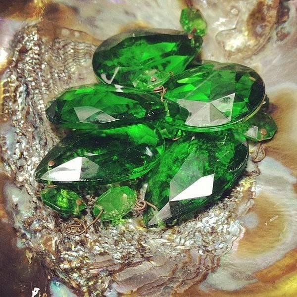 Green Photograph - #green Stuff At My Moms House by Melissa Wyatt