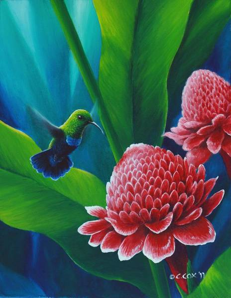 Painting - Green-throated Carib And Torch Lilies by Christopher Cox