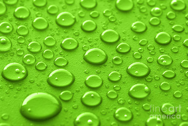 Wall Art - Photograph - Green Water Drops by Blink Images