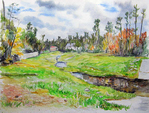 Painting - Greenbelt In The Woodlands by TD Wilson
