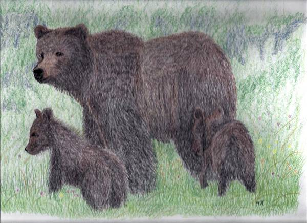 Grizzlies Mixed Media - Grizzly Sow And Cubs by Tony  Nelson