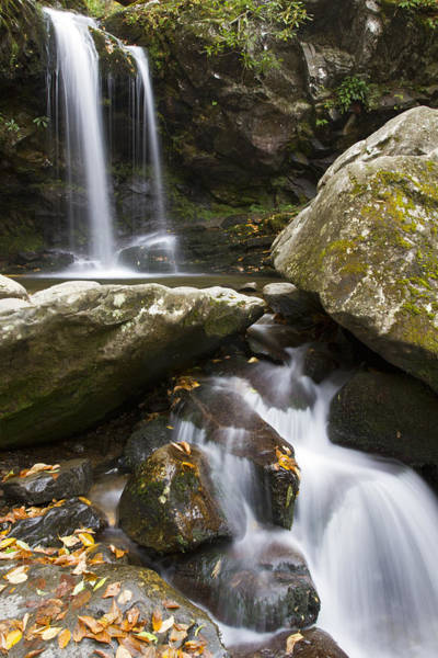 Photograph - Grotto Falls In Great Smoky Mountains National Park by Pierre Leclerc Photography