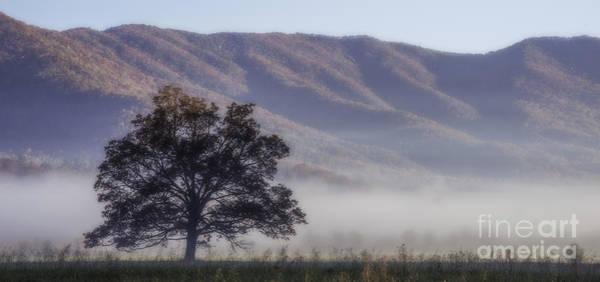 Photograph - Ground Fog by David Waldrop