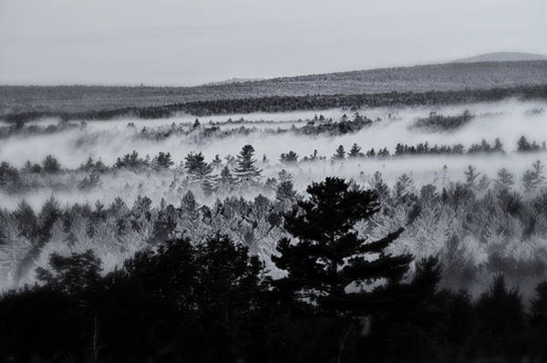 Washington County Wall Art - Photograph - Ground Fog by Susan Capuano