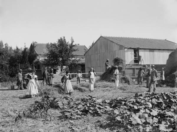 Kibbutz Photograph - Group Portrait Of Members Of A Jewish by Everett