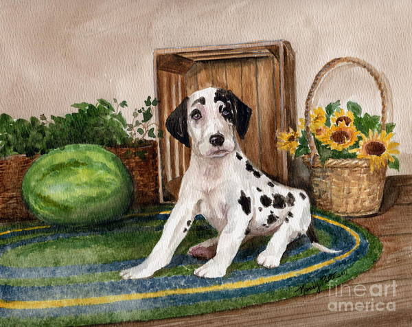 Black Great Dane Painting - Growing Fast by Nancy Patterson