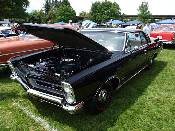 Rogue Valley Photograph - GTO by Teri Schuster