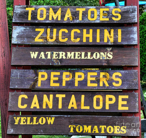Wall Art - Photograph - Guaranteed Farm Fresh Foods  by Paul Ward
