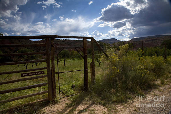 Fruita Photograph - Guy Smith Place by Timothy Johnson