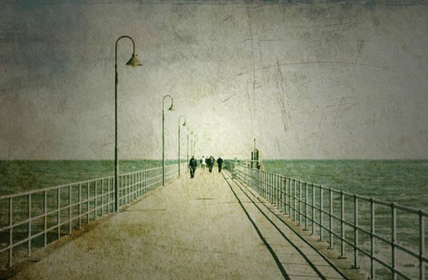Wall Art - Photograph - Halcyon Days by Andrew Paranavitana
