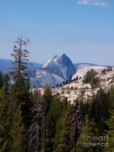 Photograph - Half Dome by M Valeriano