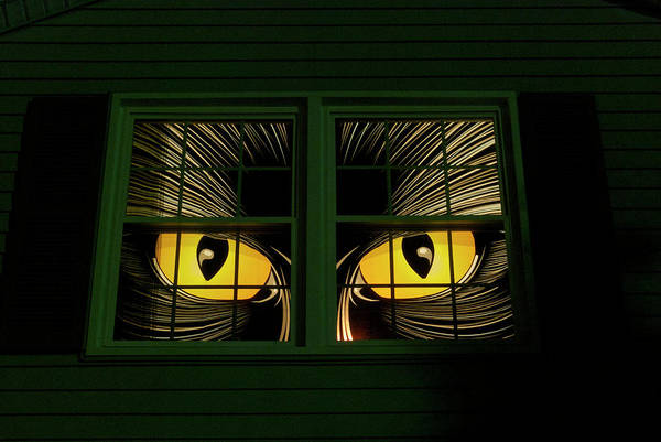 Wall Art - Photograph - Halloween Cat Eyes by Thomas Woolworth