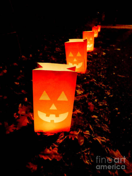 Photograph - Halloween Paper Lanterns by Edward Fielding