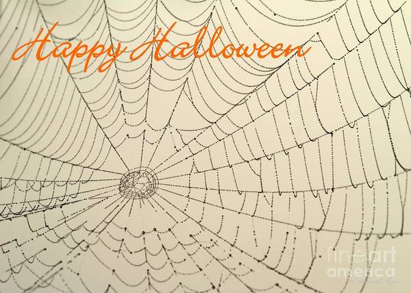 Photograph - Halloween Spider Web Card by Sabrina L Ryan