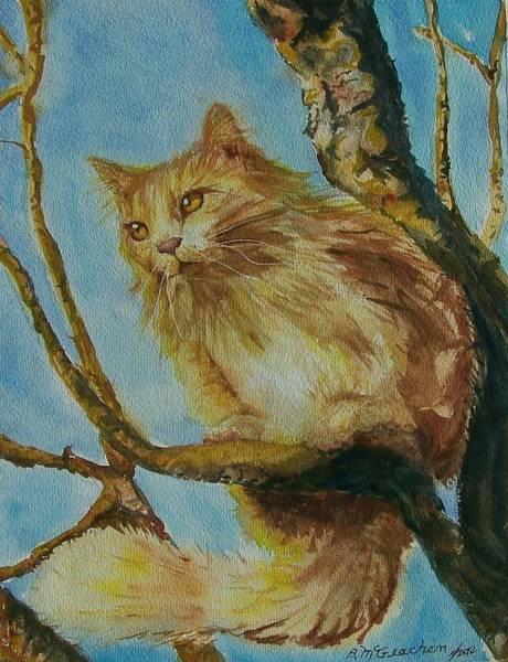 Hanserelli Art Print by Barbara McGeachen
