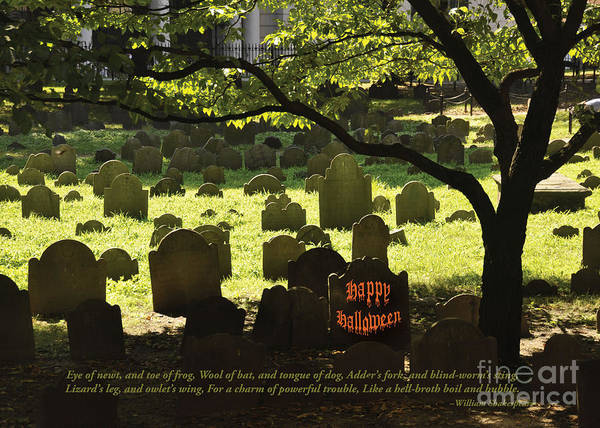 Photograph - Happy Halloween by Cheryl McClure