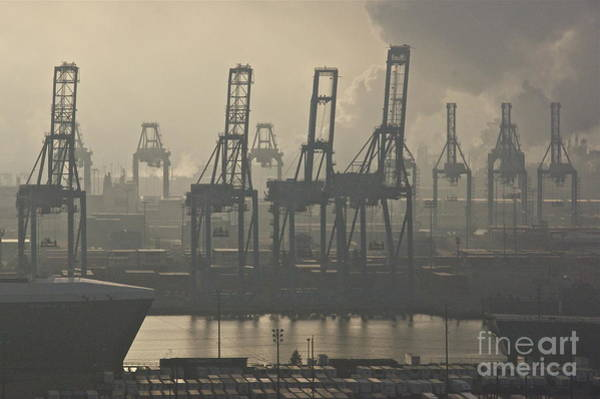 Wall Art - Photograph - Harbor Cranes by Sean Griffin
