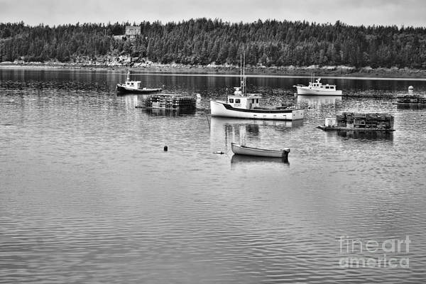 Photograph - Harbor In Black And White by Traci Cottingham