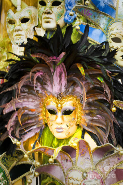 Wall Art - Photograph - Harlequin Masks by Donald Davis