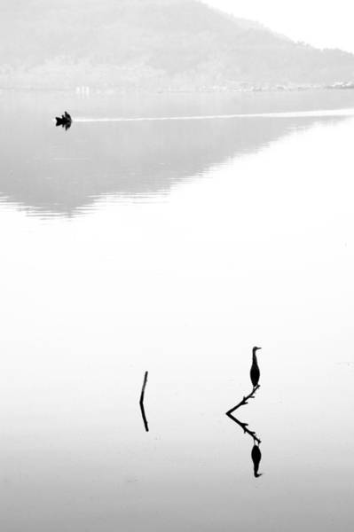 Dal Lake Photograph - Harmony by Ng Hock How