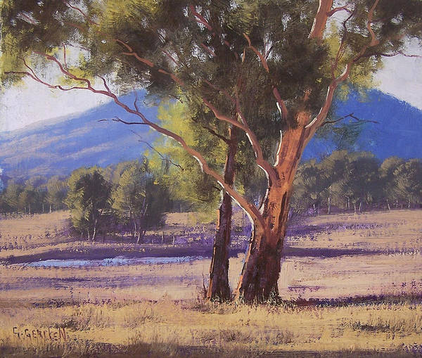 Old Tree Painting - Hartley Vale Gum by Graham Gercken