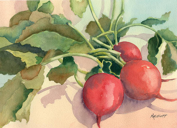Beet Wall Art - Painting - Harvard Bound by Marsha Elliott