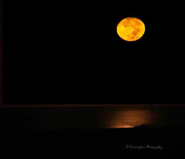 Photograph - Harvest Moon by Dorothy Cunningham