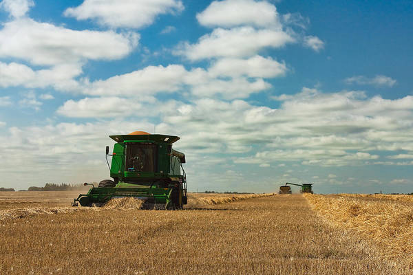 Wall Art - Photograph - Harvest On The Canadian Prairies by Matt Dobson
