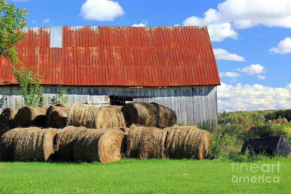 St Ignace Wall Art - Photograph - Harvest Season by Sophie Vigneault
