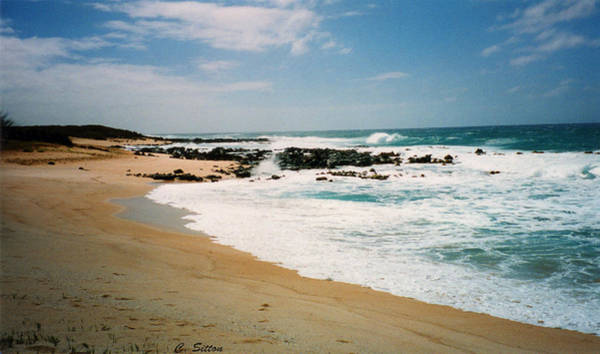 Photograph - Hawaiian Shore by C Sitton
