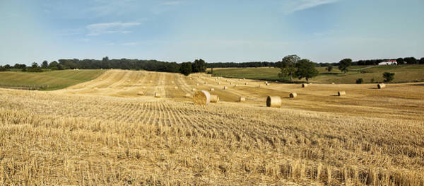 Photograph - Hay Bale Field by Nick Mares