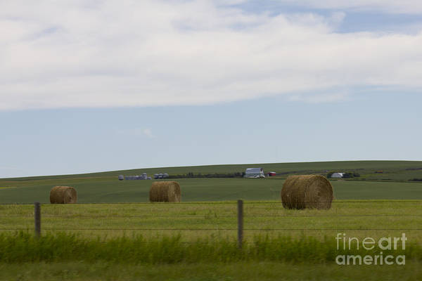 Photograph - Hay Bales by Donna L Munro
