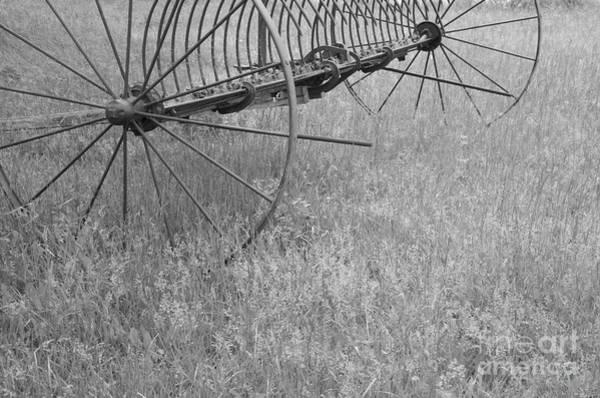 Hay Rake Photograph - Hay Rake  by Wilma  Birdwell