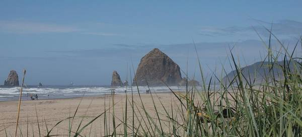 Cannon Beach Painting - Haystack  by Jim Moore