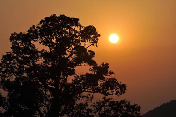 Photograph - Hazy Sunset by Marty Koch