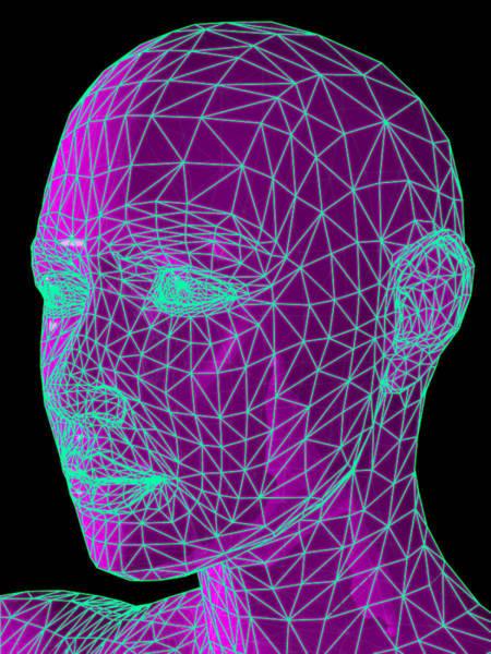 Contour Map Photograph - Head Contour Map, Art by Laguna Design