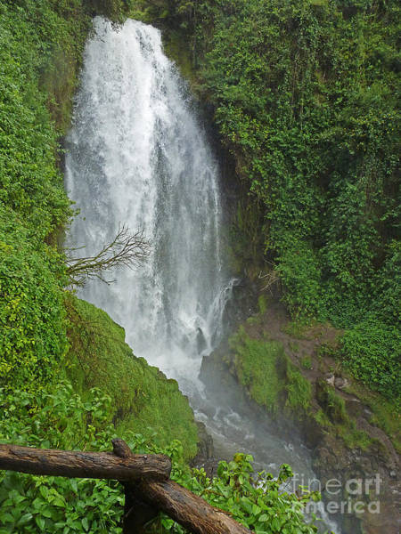 Photograph - Headwaters Peguche Falls Ecuador by Julia Springer