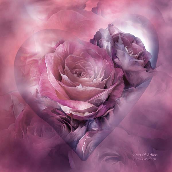 Mixed Media - Heart Of A Rose - Mauve Purple by Carol Cavalaris