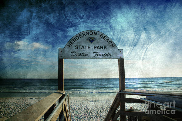 Photograph - Henderson Beach State Park Florida by Susanne Van Hulst