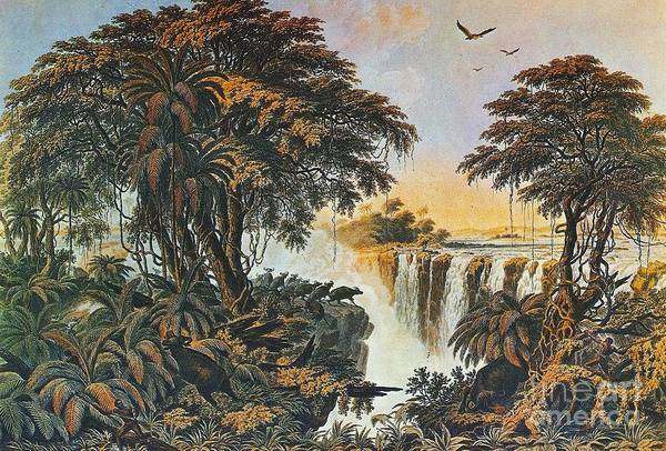 Victoria Falls Painting - Herd Of Water Buffalo by Pg Reproductions