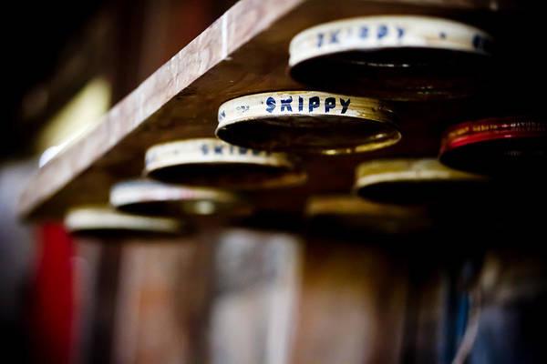 Skippy Wall Art - Photograph - Hey Skippy by Toni Johnson